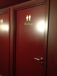 Themed Toilets!