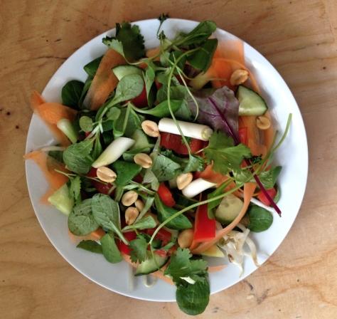 thai-salad-21